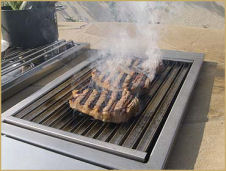Outdoor Kitchen Grills & BBQs